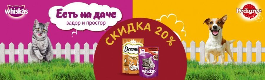 Whiskas & Dreamies: Дача!