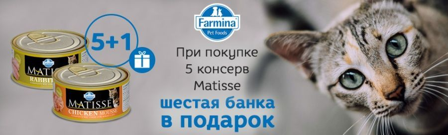 Farmina Matisse Cat Mousse: 5 + 1