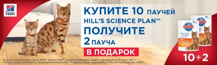 Hill's: Science Plan 10 + 2