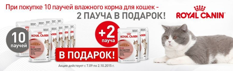 Паучи Royal Canin для кошек: 10+2